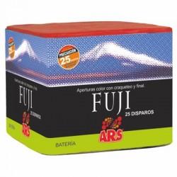 Batería Fuji